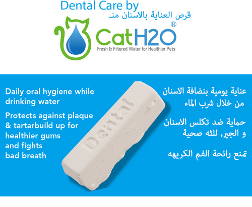 CatH2O Fresh & Filtered Pet Water Fountain with Dental Care Tablet 2L
