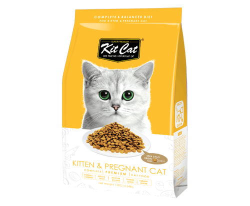 Kit Cat Kitten & Pregnant  Dry Cat Food 1.2kg
