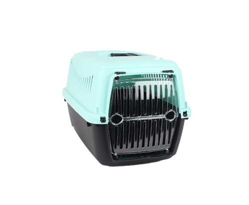 Small Pet Carrier with Transparent Plastic Door