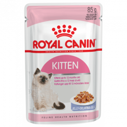 Royal Canin Kitten (in Jelly) 12x85g