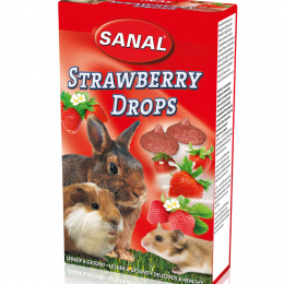 Sanal Strawberry Drops for Rodents 45g